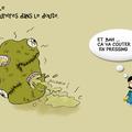 Amity vs pulentraille