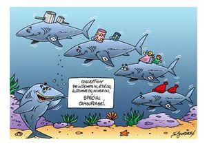 Requin mode