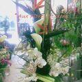 Composition moderne Héliconias noirs, Nutens noirs et Orchidées