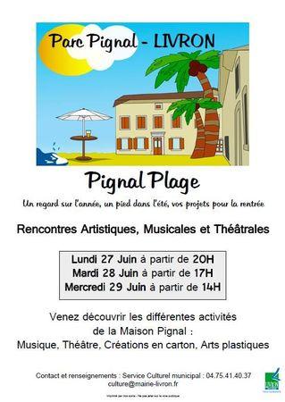 pignal-plages-2011