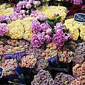 des fleurs comme j'aimerai