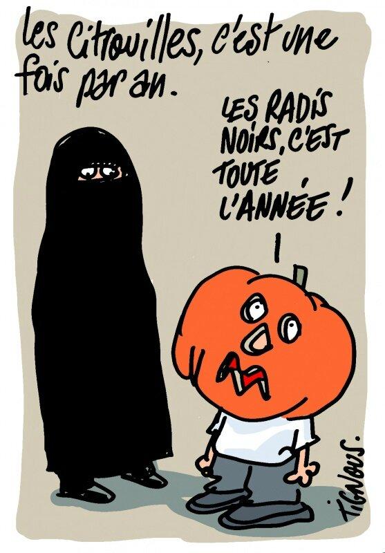 islamburka islamiste barbu humour