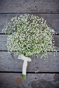 12512_bouquet_de_gypsophyles_e1336566872505