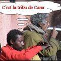 la tribu de Cana