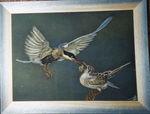 oiseau_nourrit_le_petit