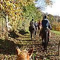 balade liberté - Mesnil Ozenne à cheval (4)