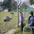 Parc animalier de dinard
