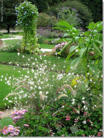 jardin des plantes septembre 2012