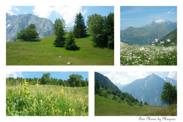 Alpes 2013 10