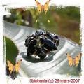 bague28-03-2007B