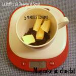 Mugcake au chocolat -recette facile (2)