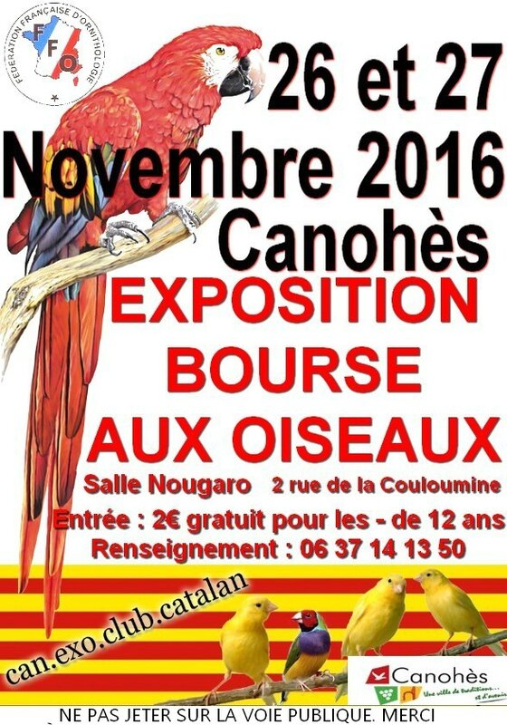 Affiche Expo 2016
