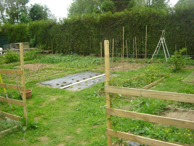 Petit tour au jardin potager qui prend forme le 18 for Jardin potager 2015