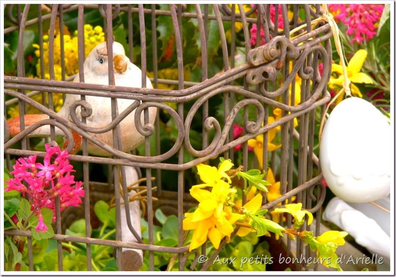 Pâques en fleurs (6)