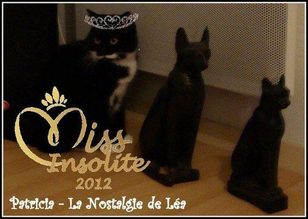 Miss_Insolite_2012