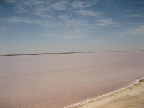 Lac rose - Photo 139