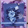 Challenge Colour lilac/blue