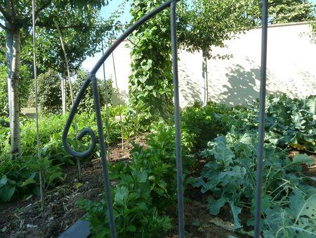 01-jardin (13)