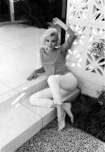1962-06-tim_leimert_house-pucci_wb2-by_barris-022-2