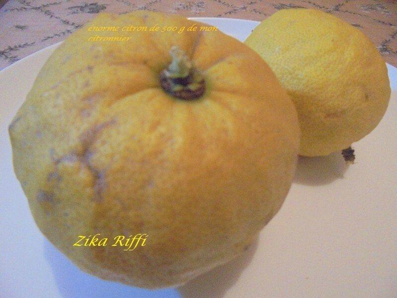 gros citron