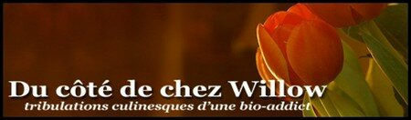 Du_c_t__de_chez_Willow