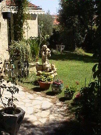 une_partie_du_jardin