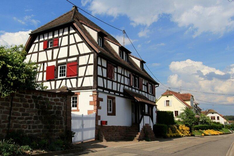 Laubenheim (Mollkirch) (5)