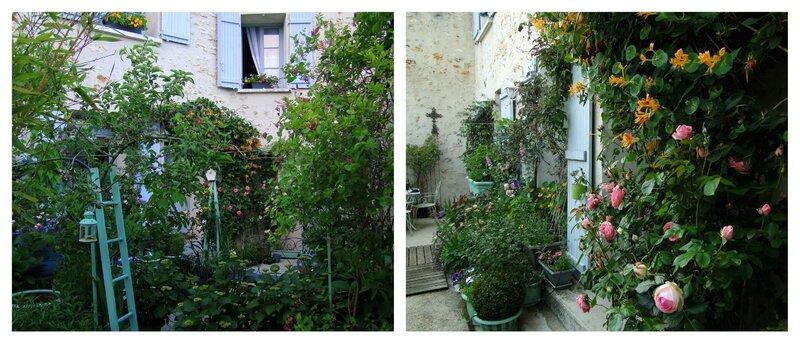 BOISEMONT jardinage rosiers anglais chèvrefeuille aménager une petite cour