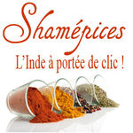logo_Shamepices_1_
