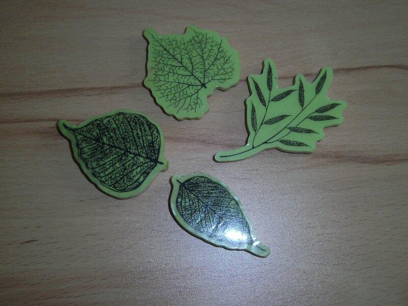 feuilles d'automne 011
