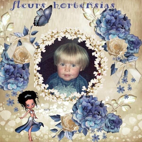 fleurs hortensias 1