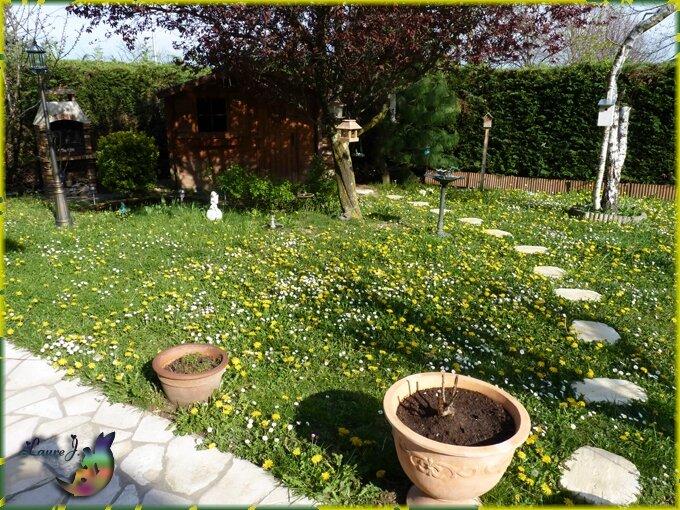 Premi re tonte du jardin mon jardin du bonheur for Tonte jardin