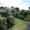 Jardin de Morailles (9)
