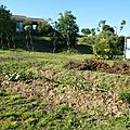 Potager en permaculture : seconde butte 3e partie