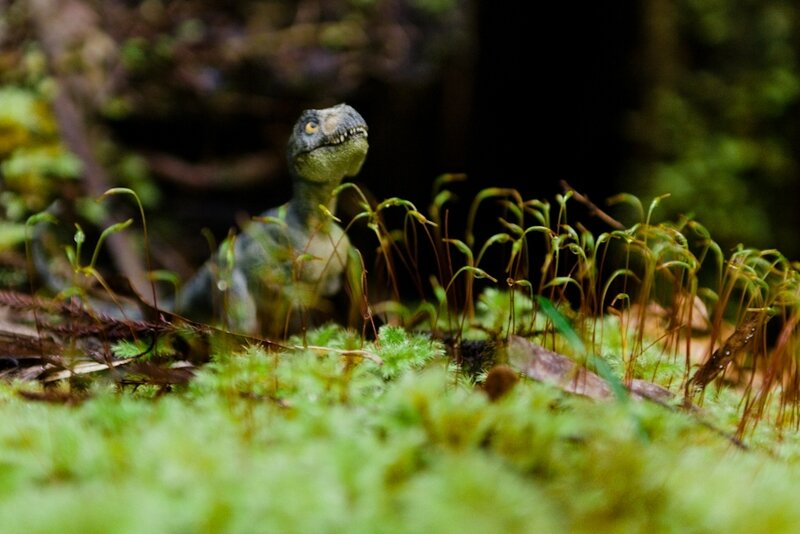 dinosuite