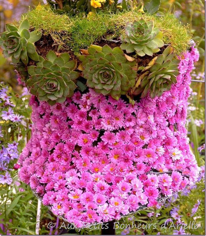 Fruits légumes et fleurs d'automne (10)