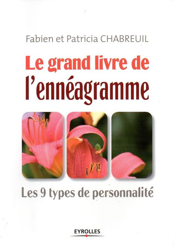 le grand livre de l 39 enn agramme les 9 types de personnalit fabien et patricia chabreuil. Black Bedroom Furniture Sets. Home Design Ideas