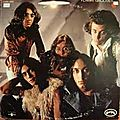 The flamin' groovies -