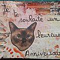 n° 549, un (chat) leureux anniversaire (640x454)