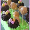 cakes pop de Pâques (9)