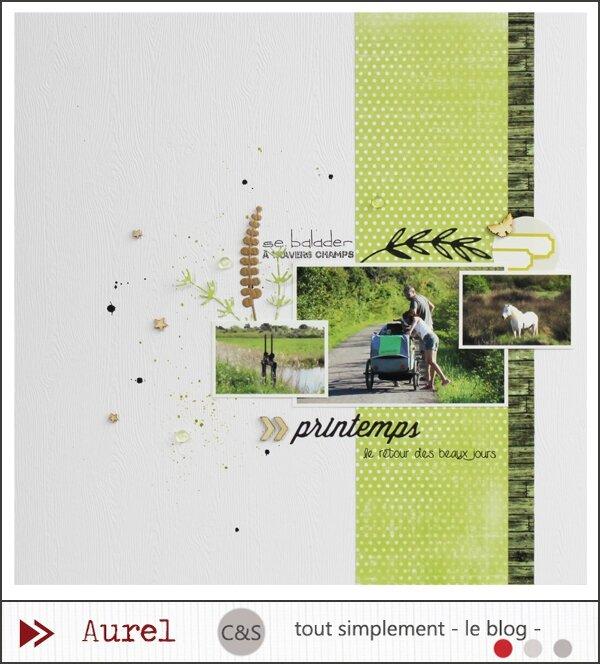 140515 - Printemps - Bois_BLOG