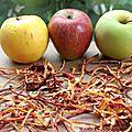 Chips d'épluchures de pommes ! #zerodechet #budgetmini