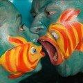 Petit poisson prend garde à toi !