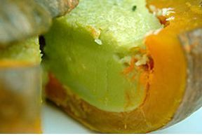courge coco (1)