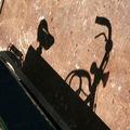 vélo ombres_3386a