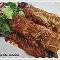 Cannellonis au poisson et champignons