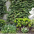 Windows-Live-Writer/Joli-printemps-au-jardin-_601C/20170331_141006_2