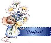 images bonjour