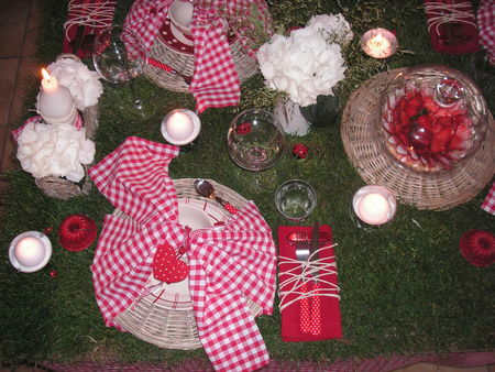table_picnic_057