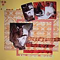 Album scrap de Dame et Bella